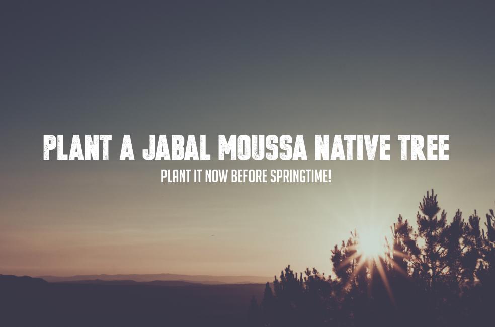 Jabal-moussa